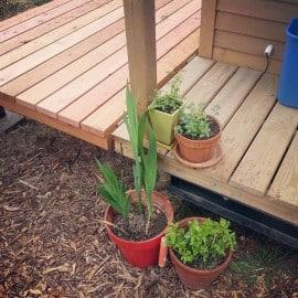 tiny house porch plants
