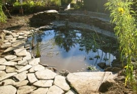 grey-water-pond